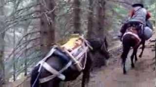 На коне през Рила   I