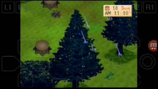 harvest moon back to nature indonesia part 45