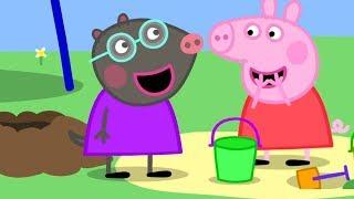 Peppa Pig English Episodes 🎄Peppa