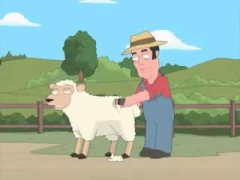 Oveja gay-PADRE DE FAMILIA(Family Guy)