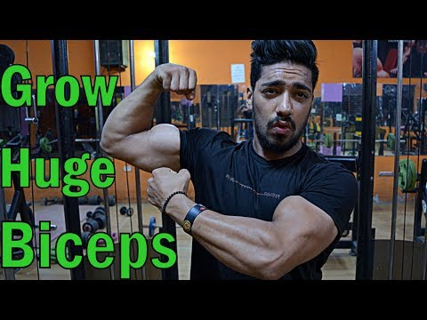 Xxx Mp4 How To Grow Huge Biceps Top 3 Exercise For MASS Beginner Workout 3gp Sex