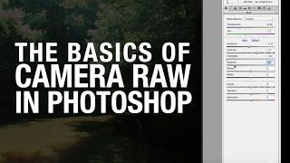Camera RAW basics in Adobe Photoshop