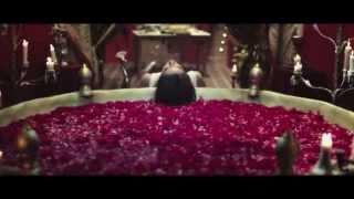 Mah e Meer Official Trailer
