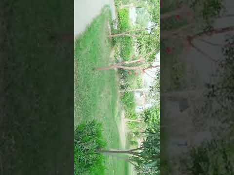 Xxx Mp4 Mewati School Super Sulela No1 3gp Sex