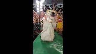 jagran dhaneti kharagpur 2017 gajab kar gai hai brij ki radha