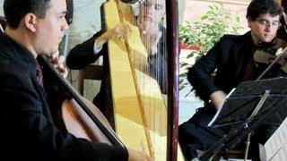 Amar Não é Pecado Luan Santana - Violino - Música para Casamento Entrada das Daminhas