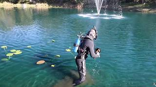 ALL TIME Underwater Moments! (river treasure, dolphins, sharks, giant catfish)   Jiggin' With Jordan