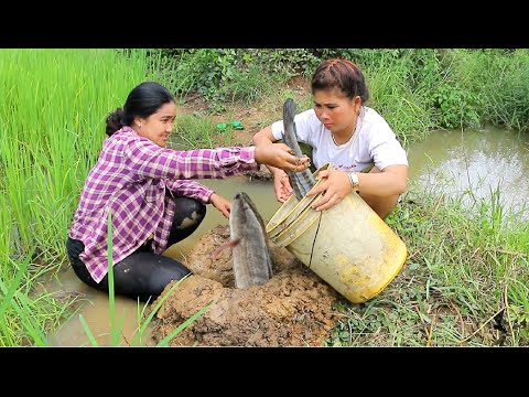 Amazing Two girls Deep Hole Fishing - How To Fishing in Battambang - Cambodia Fishing (part 64)