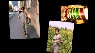gul panra pashto   new song musafara  mr niazi