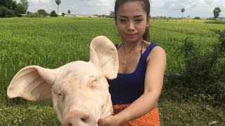 village food factory | pig head cook | traditional food in cambodia (9)