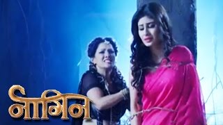 Shesha ATTACKS Shivanya | NAAGIN | 8th May 2016