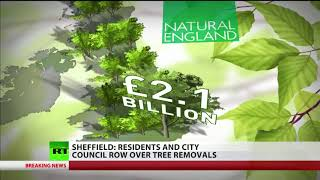 Sheffield: Residents and City Council row over tree removals