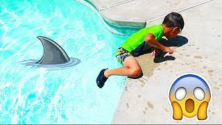 GET OUT! SHARK IN THE POOL! FUN IN THE SWIMMING POOL