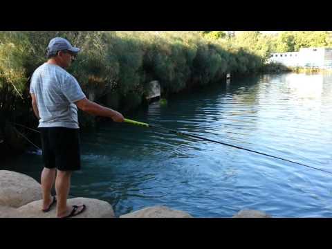 израиль рыбалка для туристов