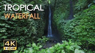 4K HDR Tropical Waterfall - Natural White Noise - Relaxing Nature Sounds & Video - Ultra HD