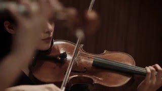 4K Music-Video Antonio Vivaldi
