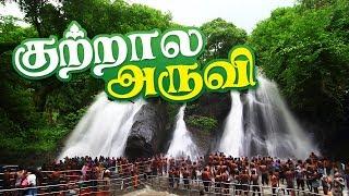 Kutralam Main Falls - Courtallam Water Falls | Main Falls | kutralam Aruvi Video