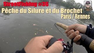 StreetFishing #36 Paris/Rennes Pêche du Silure et du Brochet