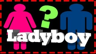ARE YOU A ladyboy ? shemale what cost ? nightlife thailand