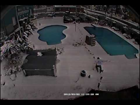 Xxx Mp4 Woman Rescues Dog From Icy Pool 3gp Sex