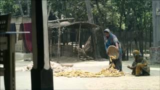 Ujan Ganger Naiya Series 1 (Episode 14) by BBC Media Action