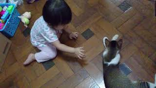 Baby girl with pussy cat...  😄😄😄