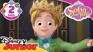 Sofia The First - King For A Day - Be Your Own King - Song - Disney Junior UK HD