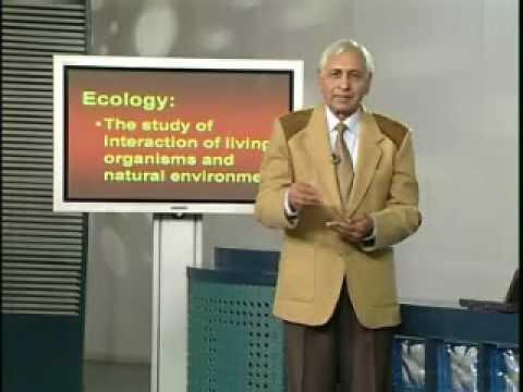 Thumbnail Lecture No. 41