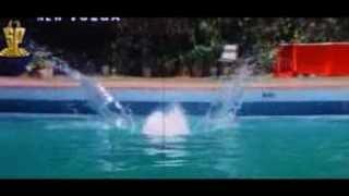 Nagma Bikini Show Never Seen Video | Super Police