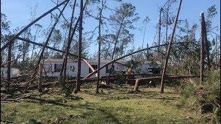 HURRICANE MICHAEL: Beautiful Longleaf Pine forest shredded north of Mexico Beach, FL