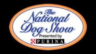 The National Dog Show - 2017