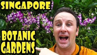 Singapore Botanic Gardens Travel Guide