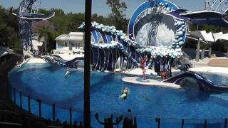 FULL Dolphin Show SeaWorld March 2017