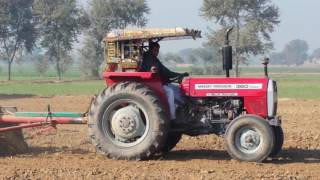 MF 240 MF 260 and MF 360 working in potato fields at chak 139/9-L sahiwal