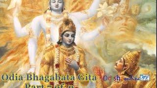 Odia Bhagabata Gita Part 7 of 9 GyanaBigyan Joga