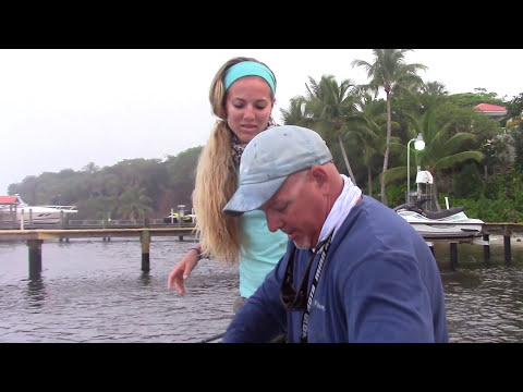 Girl Fishing for MONSTER Snook in Florida GoPro Video