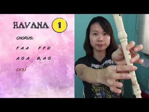 Havana Recorder Tutorial 1