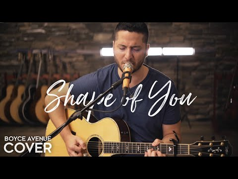Download Shape of You - Ed Sheeran  (Boyce Avenue acoustic cover) on Spotify & iTunes On Musiku.PW