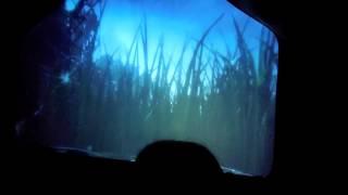 Dino Safari simulator ride