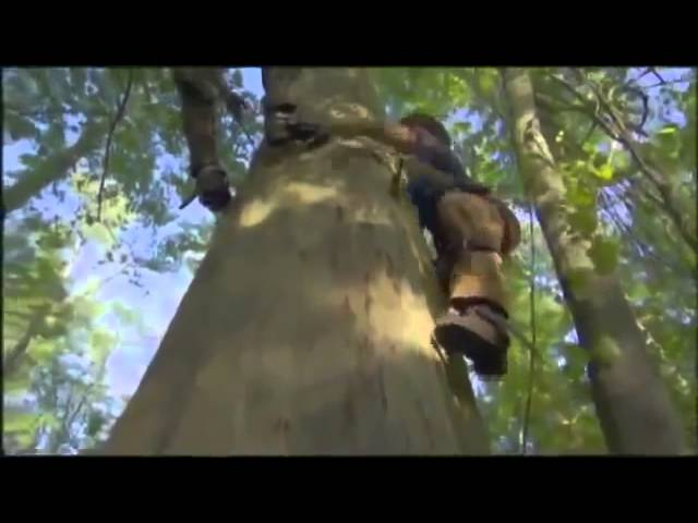 Roanoke   Documentary on the Missing Colony of Roanoke Island