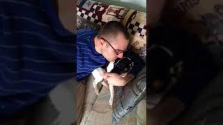 Josh kisses Milo