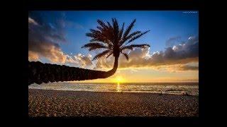 Avicii- Broken Arrows (1 hour loop)