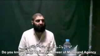 When terror speaks! Taliban leader confesses.