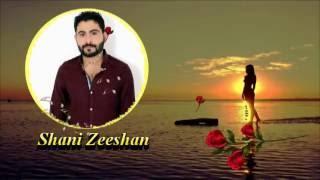 Chad Dila Ro na((Shani Zeeshan))Panjabi Sad Song