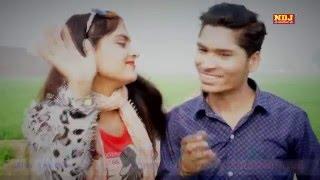 Zero Figer / New Haryanvi Song 2016 / Lattest Hit Song 2016 / Jaji King , NDJ Music