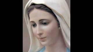 Franz Schubert - Ave Maria (Instrumental)