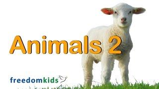 Kids Bible Videos - Animals Part 2  | Freedom Kids