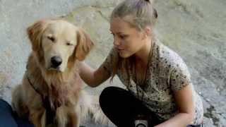 ARMY DOG Official Trailer (2015) Casper Van Dien