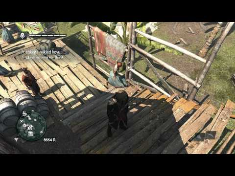 Assassin's Creed IV Black Flag - Really? Sex with stairs?