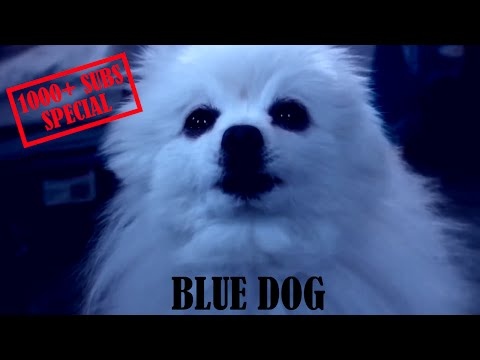 Gabe the Dog - Blue Dog [1000+ SUBS SPECIAL]